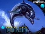 DOLPHIN_BOX